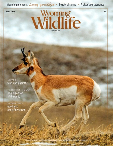 Wyoming Wildlife Cover - 5/1/2015