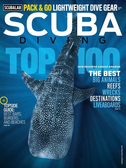 Scuba Diving Cover - 1/1/2015