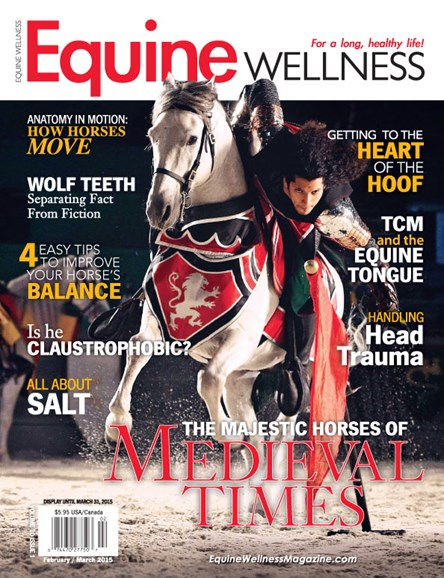 Equine Wellness Cover - 2/1/2015