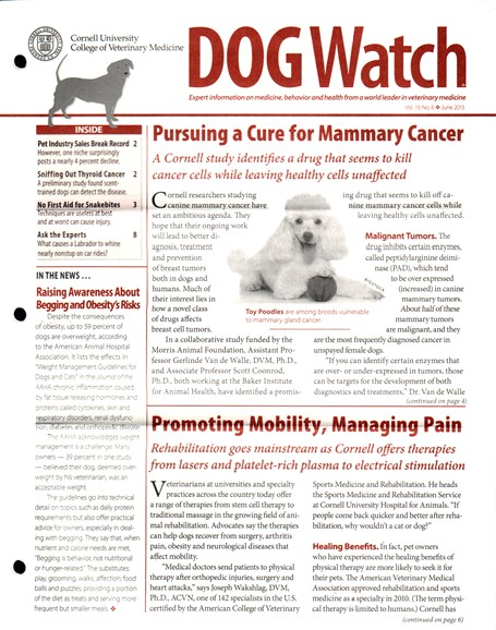 Dogwatch Cover - 6/1/2015