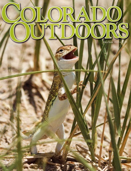 Colorado Outdoors Cover - 5/1/2015