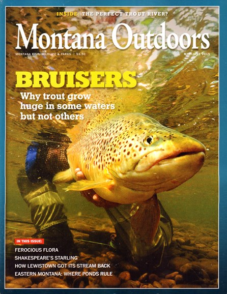 Montana Outdoors Cover - 5/1/2015