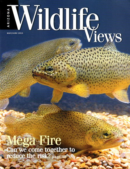 Arizona Wildlife Views Cover - 5/1/2015