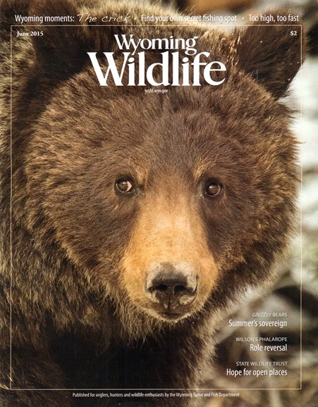 Wyoming Wildlife Cover - 6/1/2015