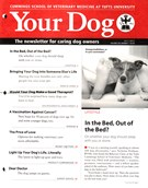 Your Dog 7/1/2015