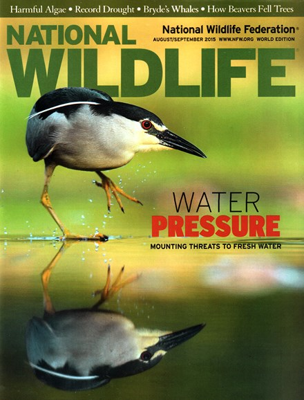 National Wildlife Cover - 8/1/2015