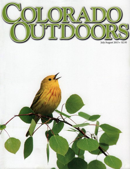 Colorado Outdoors Cover - 7/1/2015