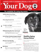 Your Dog 8/1/2015