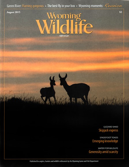 Wyoming Wildlife Cover - 8/1/2015