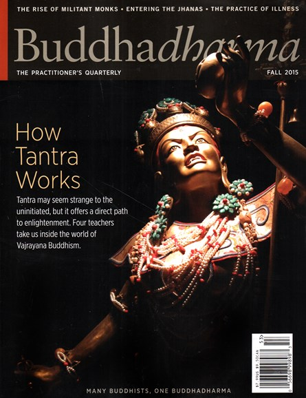 BUDDHADHARMA: THE PRACTIONER'S QUARTERLY Cover - 9/1/2015