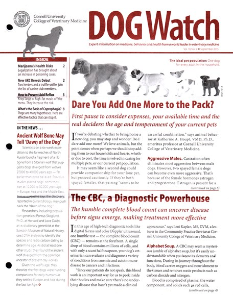 Dogwatch Cover - 9/1/2015