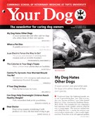 Your Dog 9/1/2015
