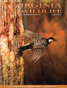 Virginia Wildlife Magazine 9/1/2015