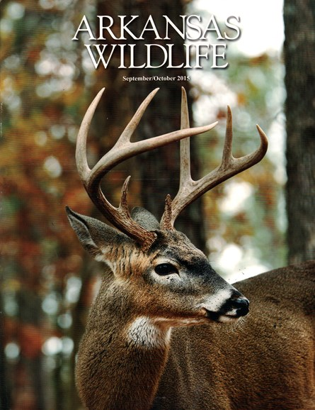 Arkansas Wildlife Cover - 9/1/2015