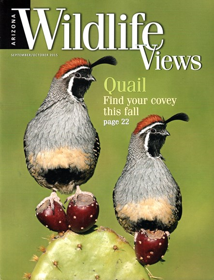 Arizona Wildlife Views Cover - 9/1/2015