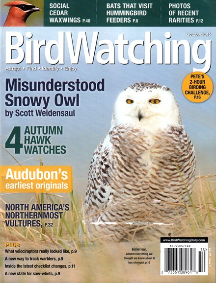 Bird Watching Cover - 10/1/2015