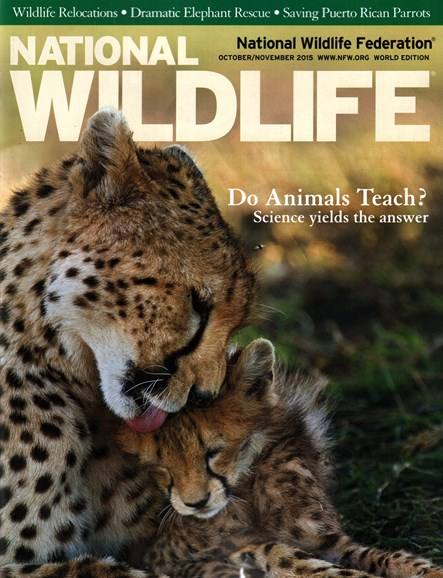 National Wildlife Cover - 10/1/2015