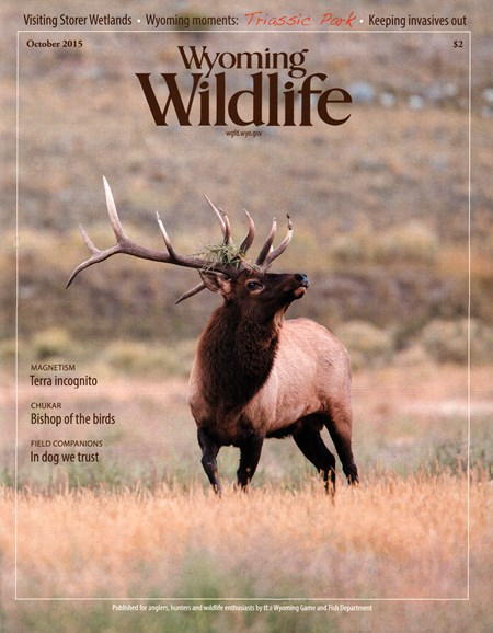 Wyoming Wildlife Cover - 10/1/2015
