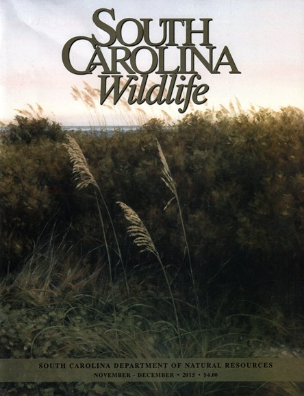South Carolina Wildlife Cover - 11/1/2015