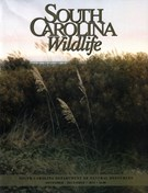 South Carolina Wildlife Magazine 11/1/2015