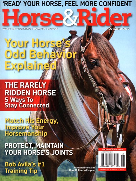 Horse & Rider Cover - 11/1/2015