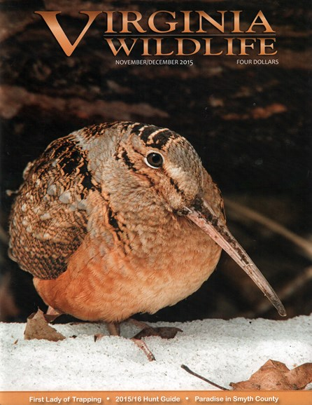 Virginia Wildlife Cover - 11/1/2015