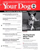 Your Dog 11/1/2015