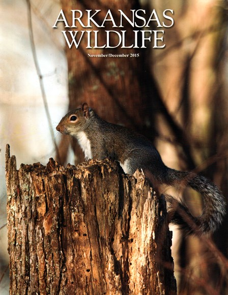 Arkansas Wildlife Cover - 11/1/2015