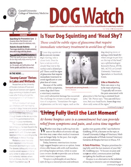 Dogwatch Cover - 12/1/2015
