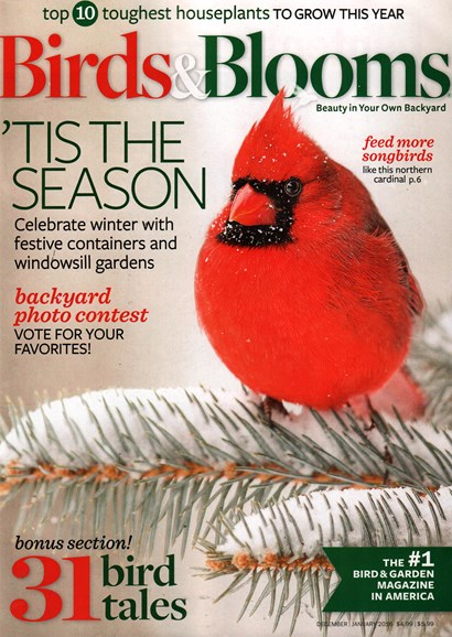 Birds & Blooms Cover - 12/1/2015
