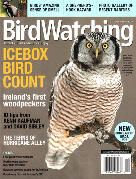 Bird Watching Cover - 12/1/2015