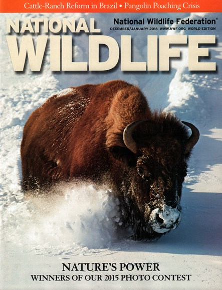 National Wildlife Cover - 12/1/2015