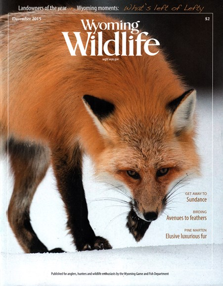 Wyoming Wildlife Cover - 12/1/2015