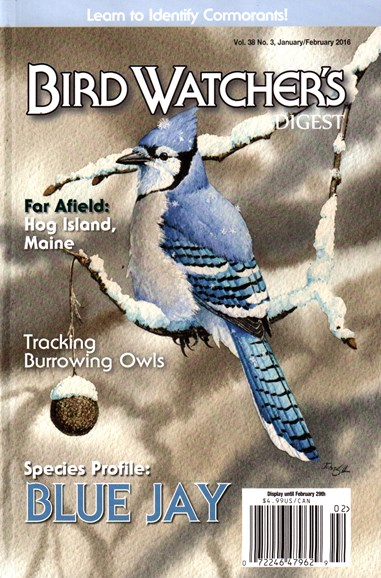 Bird Watcher's Digest Cover - 1/1/2016