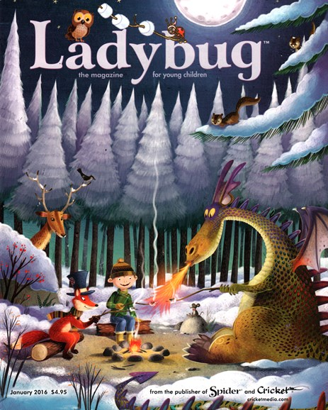 Ladybug Cover - 1/1/2016