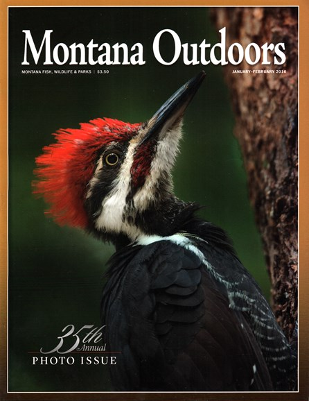 Montana Outdoors Cover - 1/1/2016