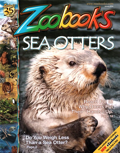 Zoobooks Cover - 1/1/2016