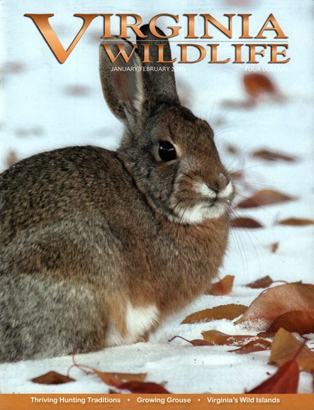 Virginia Wildlife Cover - 1/1/2016