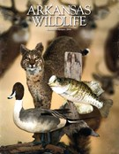 Arkansas Wildlife Magazine 1/1/2016