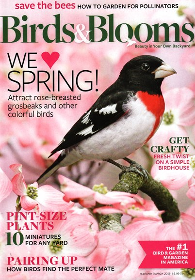 Birds & Blooms Cover - 2/1/2016