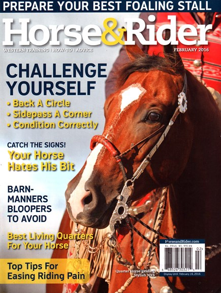 Horse & Rider Cover - 2/1/2016