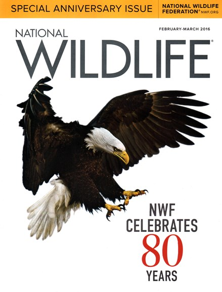 National Wildlife Cover - 2/1/2016