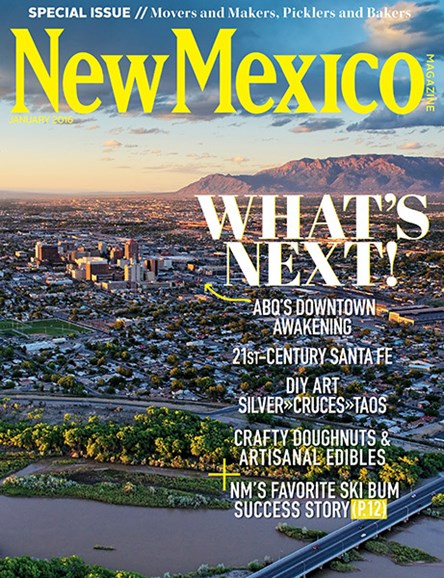 New Mexico Cover - 1/1/2016