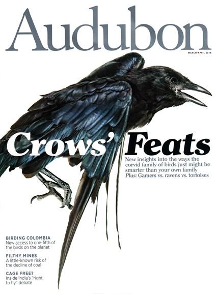 Audubon Cover - 3/1/2016