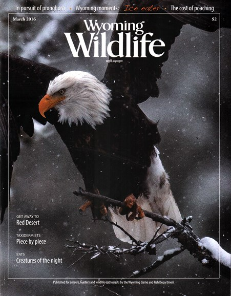 Wyoming Wildlife Cover - 3/1/2016