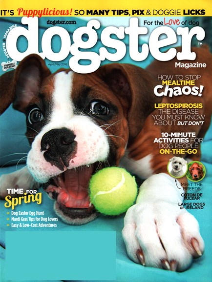 Dogster Cover - 4/1/2016