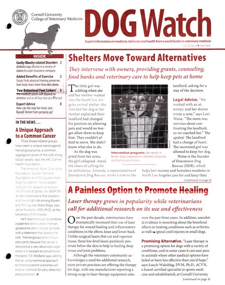 Dogwatch Cover - 4/1/2016