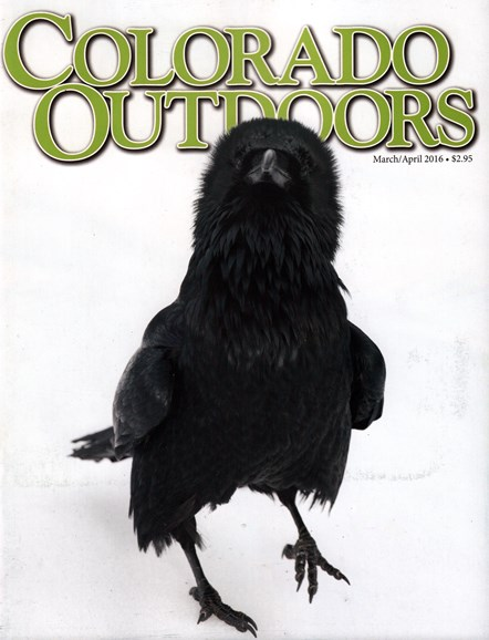 Colorado Outdoors Cover - 3/1/2016