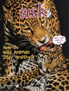 Ask Magazine 5/1/2016