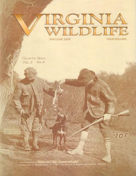 Virginia Wildlife Cover - 5/1/2016
